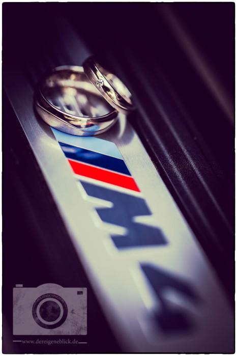 Logo 09 Ringe amaro SO6A6050