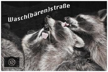 Logo Waschbären klein SO6A1409 Kopie